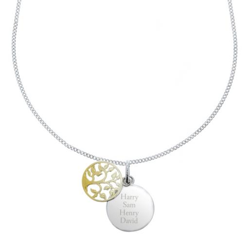 Personalised Sterling Silver & 9ct Gold Family Tree Necklace
